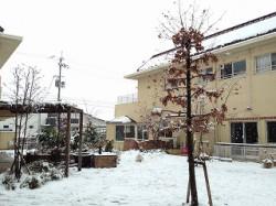 雪の日お庭