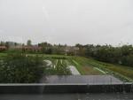 学校の裏の農場