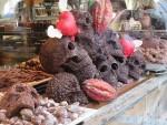 チョコレートでできた骸骨のディスプレイ